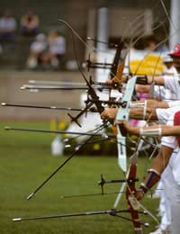 Olympic Archery Accuracy Seoul Gold